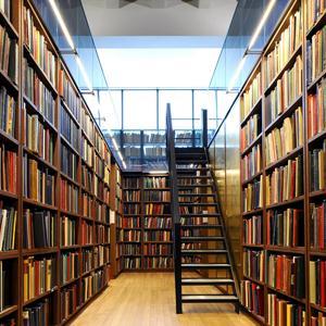 Библиотеки Будогощи