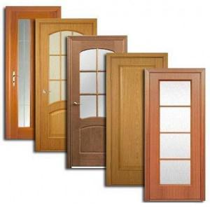 Двери, дверные блоки Будогощи