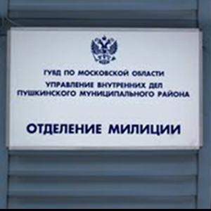 Отделения полиции Будогощи